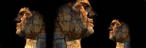 Hombres rocosos Fotos de archivo