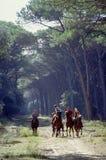 Hombres y caballos Foto de archivo libre de regalías