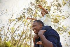 Hombros de Carrying Son On del padre como caminan en parque imagenes de archivo