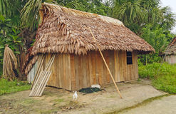 Home in an Amazon Village Stock Images