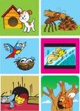 HOME animais Foto de Stock
