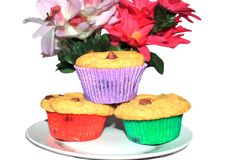 Home baked banana and chocolate chip muffins Royalty Free Stock Image