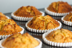 Home baked banana muffins Royalty Free Stock Photography