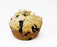 Home Baked Blueberry Corn Muffin Royalty Free Stock Photo