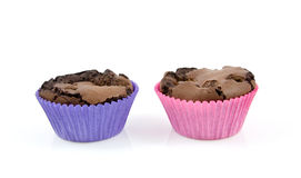 Home baked brownie cupcakes Stock Image