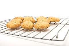 Home baked cookies Royalty Free Stock Photo
