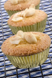 Home baked cupcake with salted peanuts Royalty Free Stock Photography