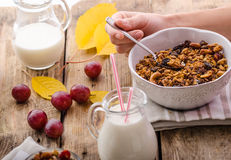 Home-baked granola with nuts, honey and pieces of fruit Royalty Free Stock Photo
