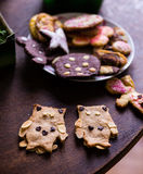 Home-baked Owl cookies stock image