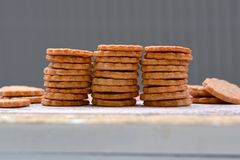Home baked selfmade dog treat cookies stacked in a row stock photos