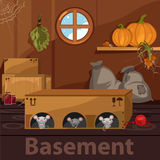 Home basement with rodents, boxes and food Stock Image