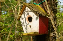 Home for birds Royalty Free Stock Photography