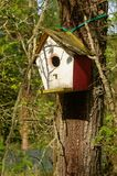 Home for birds Stock Photography