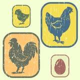 Home birds. Vintage icon with farm birds Royalty Free Stock Photo