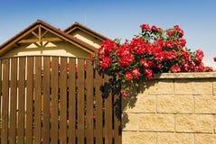 Home blommavägg för hus Arkivbilder