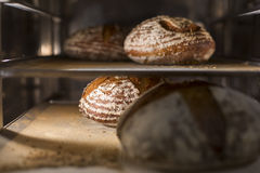 Home bread in oven cooking Stock Photography