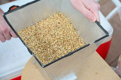 Home brew grain mill Stock Photos