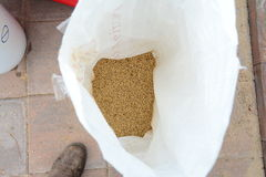 Home brew grain mill Royalty Free Stock Images