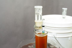Home brew hydrometer royalty free stock photo