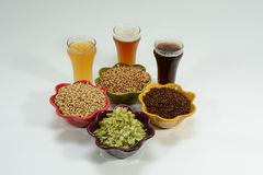 Home brew ingredients of grain and hops. Home brew beer ingredients with varying colors of malted barley grain to illustrate different grains in beer recipes Royalty Free Stock Photography