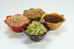 Home brew ingredients of grain, hops, yeast and water Royalty Free Stock Images