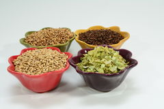 Home brew ingredients of grains and hops Stock Image