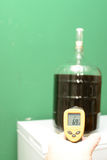 Home Brew thermometer Royalty Free Stock Photos
