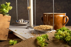 Home Brewing of Beer. Stock Photography