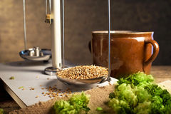 Home Brewing of Beer. Stock Images