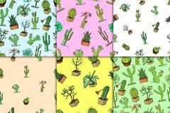 Home cactus plants with prickles and nature elements in pots and flowers. exotic or tropical. various succulents. Seamless pattern. engraved in ink hand drawn Stock Images