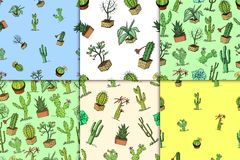 Home cactus plants with prickles and nature elements in pots and flowers. exotic or tropical. various succulents. Seamless pattern. engraved in ink hand drawn Royalty Free Stock Photography