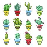 Home cactus set stock illustration