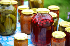 Home canned vegetables in the garden in summer Royalty Free Stock Photography