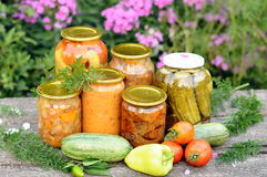 Home canning, canned vegetables Stock Images
