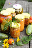 Home canning, canned vegetables royalty free stock photos