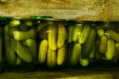 Home canning. Pickled cucumbers in glass jars. Home canning. Pickled cucumbers in glass jars standing on wooden shelves in the cellar royalty free stock photos