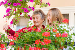 Home care. Elderly women shows her flowers to her assistant Royalty Free Stock Photos