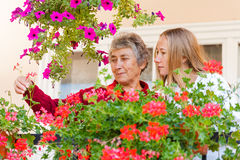 Home care. Elderly women shows her flowers to her assistant stock photo