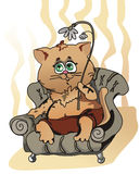 Home cat. (EPS) home cat with flower sits in easy chair (can be used for printing and web Royalty Free Stock Photos