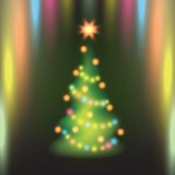 Home Christmas fir tree on colorful background. Stock Photos