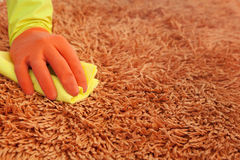Home cleaning carpets in the living room Royalty Free Stock Photography