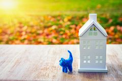 Home concept. toy pet cat near miniature house on green field background. The sun shines on house. Family and home  insurance. Royalty Free Stock Photos