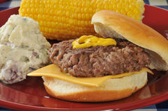 Home cooked cheeseburger Royalty Free Stock Images