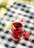 Home-cooked cherry compote on the tablecloth in garden Royalty Free Stock Images