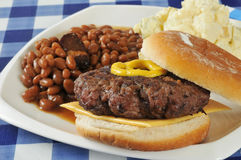 Home cooked hamburger Stock Images