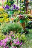 In home cozy garden on summer. Royalty Free Stock Photos