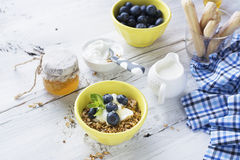 Home crispy golden granola mixture of flakes and nuts. On a baking sheet from the oven with yogurt and fresh blueberries. The concept of pure healthy organic Stock Images