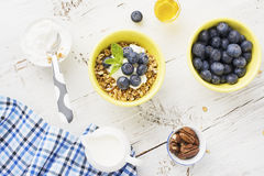 Home crispy golden granola mixture of flakes and nuts. On a baking sheet from the oven with yogurt and fresh blueberries. The concept of pure healthy organic Royalty Free Stock Images