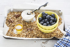 Home crispy golden granola mixture of flakes and nuts. On a baking sheet from the oven with yogurt and fresh blueberries. The concept of pure healthy organic Royalty Free Stock Image