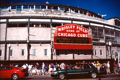 Home of the Cubs Stock Image